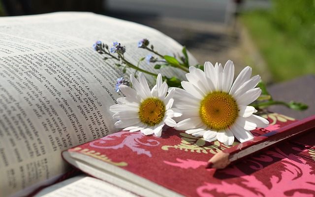 Photo of an open book, writing pad, flowers and a pencil